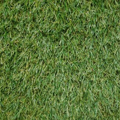 PALERMO 3431 GRASS