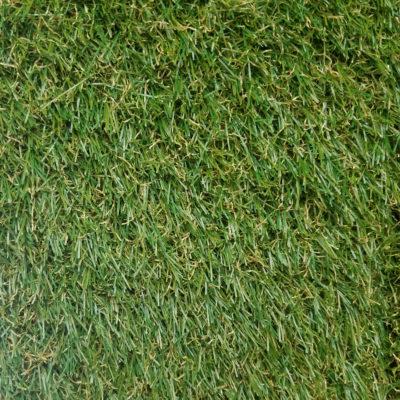TORINO 3436 GRASS