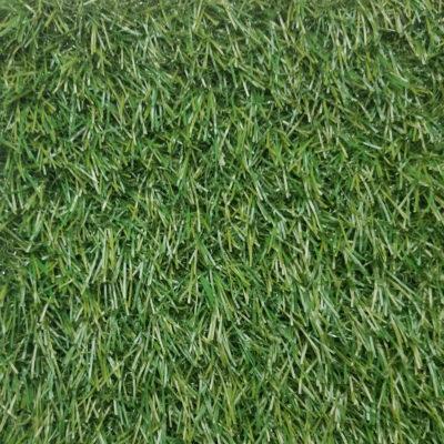 VENICE 3496 GRASS